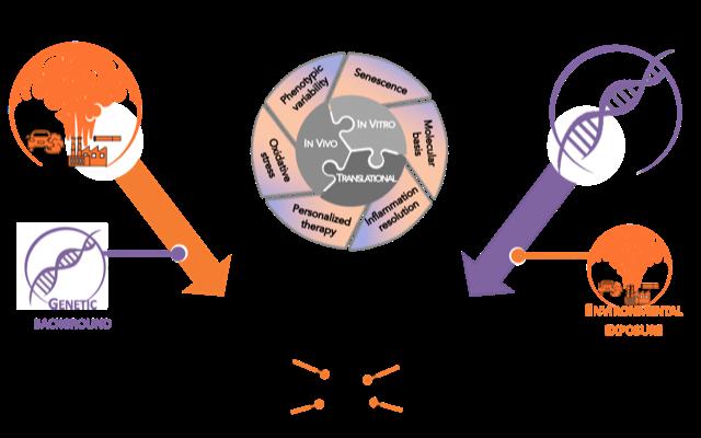 GEIC2O-approach